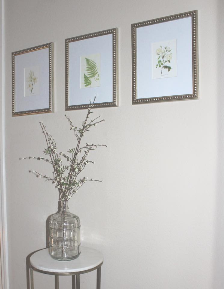 framed botanical prints large jar spring branches