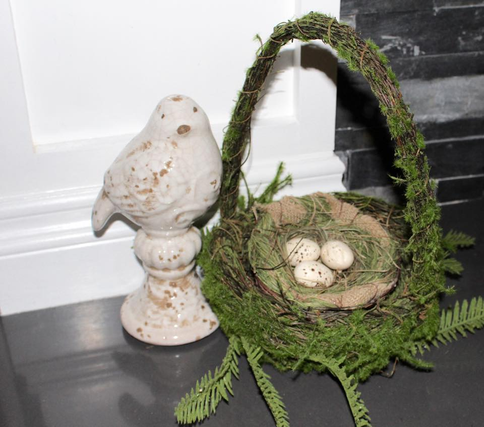 spring next moss basket bird
