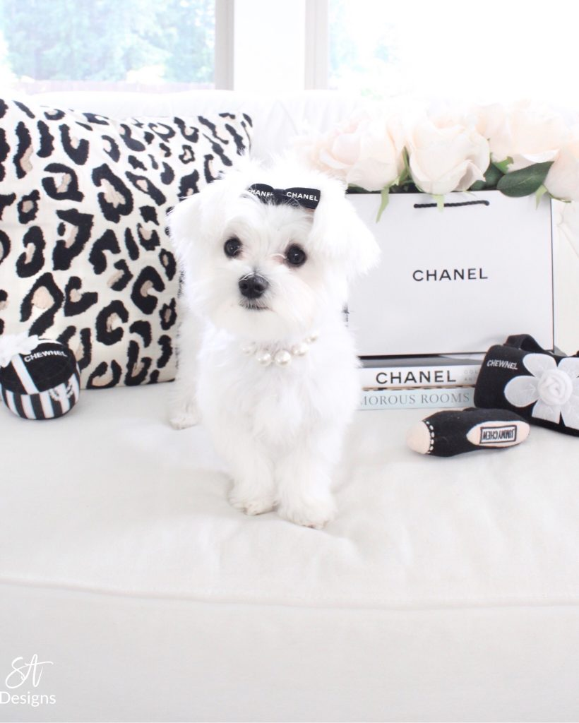 chanel dog accessories, designer dog, Chanel chewnel, Chanel inspired puppy, Chanel puppy hair bow, designer dog hair bows, leopard pillow cover cb2, Chanel puppy dog chew toys, Chanel ribbon dog hair bows Etsy, Chanel flower vase bag diy hack, puppy dog pearl collar necklace