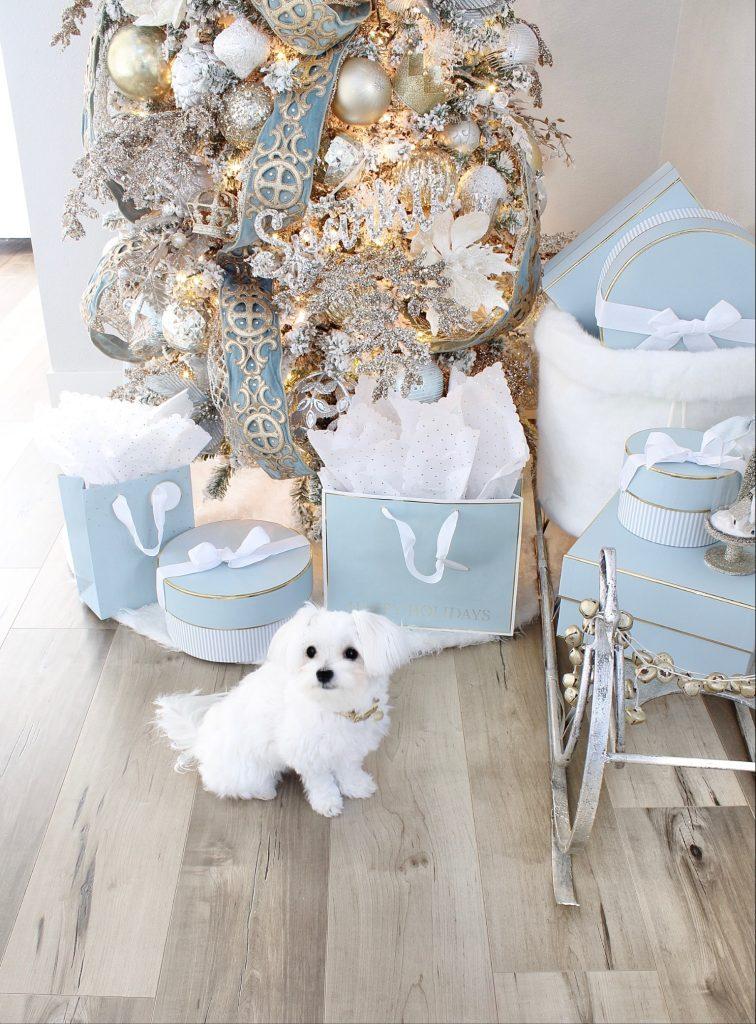 trinity scroll velvet ribbon spa blue wired edge christmas ribbon, flocked christmas tree, glamorous christmas tree decorating tips, Maltese christmas dog, dogs in front of christmas trees, christmas decorating tips and ideas, glam christmas tree decorating